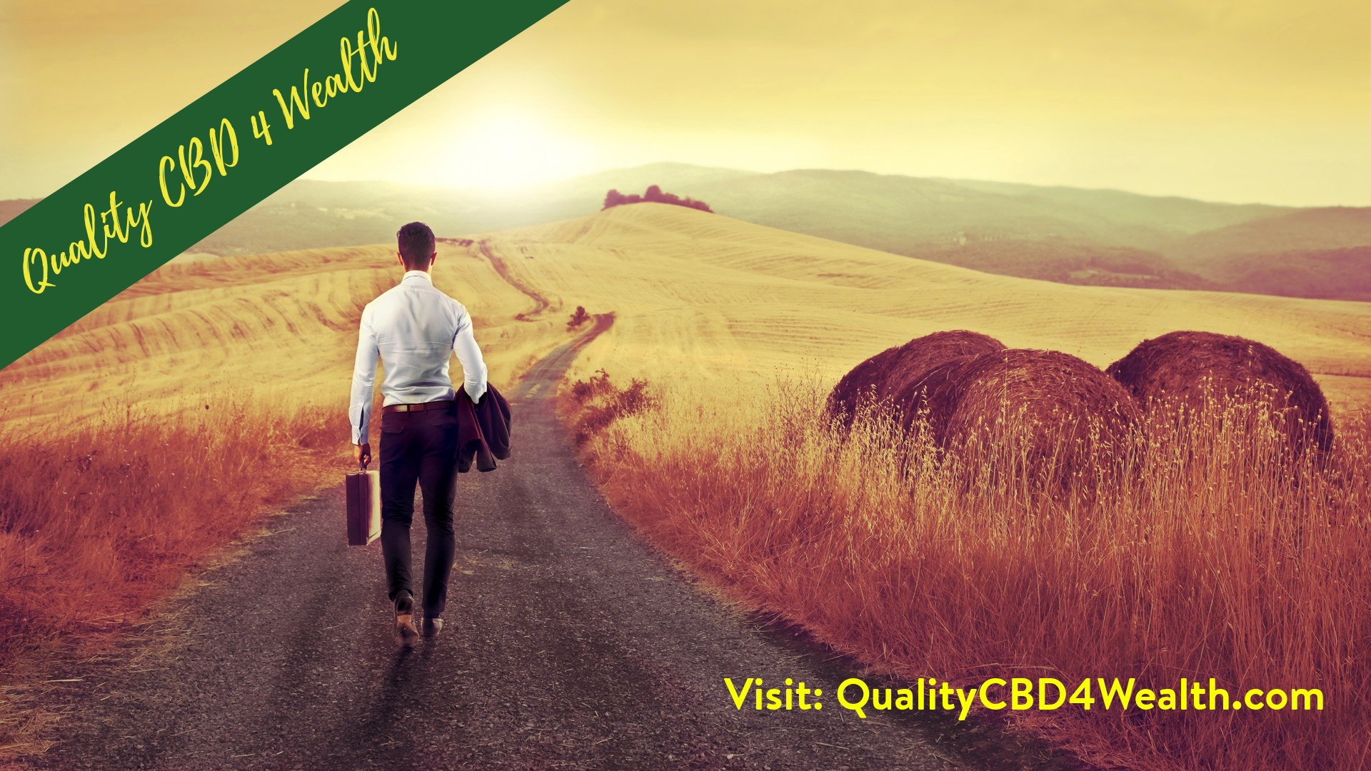 Quality-CBD4-Wealth-1920x1080-layout1433-1eegiin